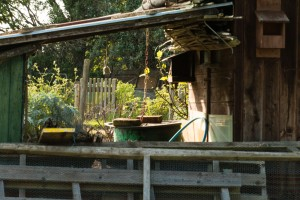 Allotments May 12 2016 - 12