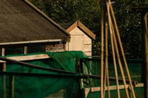 Allotments May 12 2016 - 14