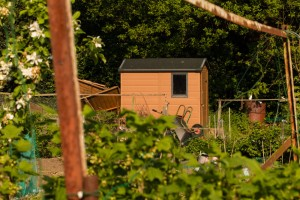Allotments May 12 2016 - 15