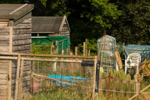 Allotments May 12 2016 - 8